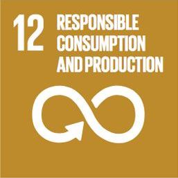 Sustainable Development Goal 11: Responisble consumption